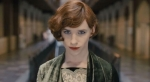 RESENHA CR�TICA OSCAR 2016: A Garota Dinamarquesa (The Danish Girl)